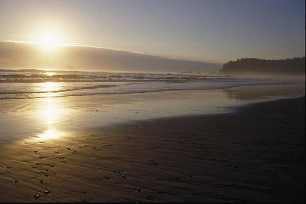 Wall Art - Photograph - Sun Setting On Shoreline by Gillham Studios