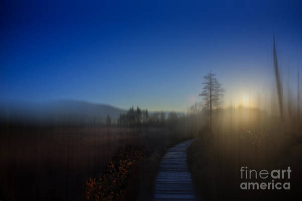Photograph - Sun Setting Over The Glades by Dan Friend