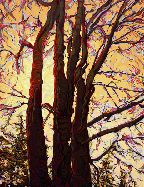 Painting - Sun-shielding Gallantrees by Amy Ferrari
