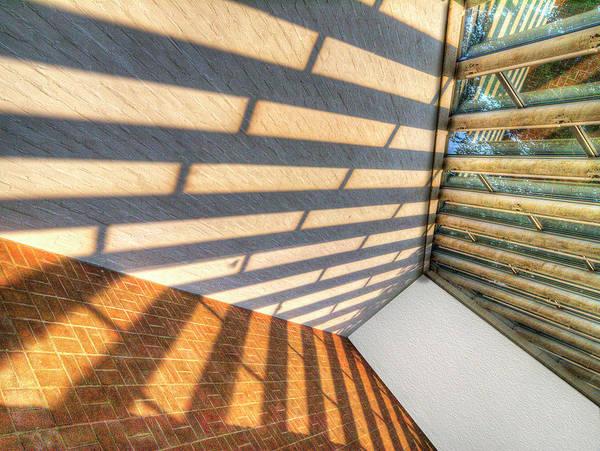 Photograph - Sun Struck by Paul Wear
