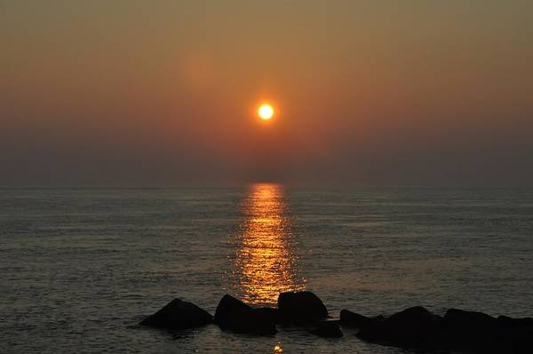 Jetti Wall Art - Photograph - Sun Up On The Rocks by Bill Cannon