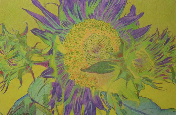 Pastel - Sunbaked by Cris Fulton