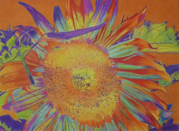 Drawing - Sunbath by Cris Fulton