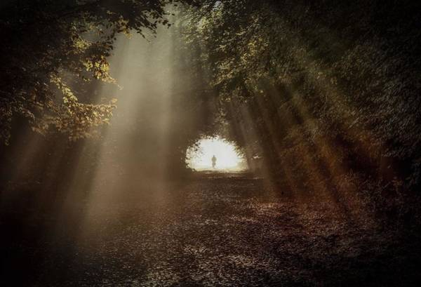 Night Digital Art - Sunbeam by Maye Loeser