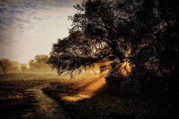 Photograph - Sunbeam Sunrise by Pete Rems