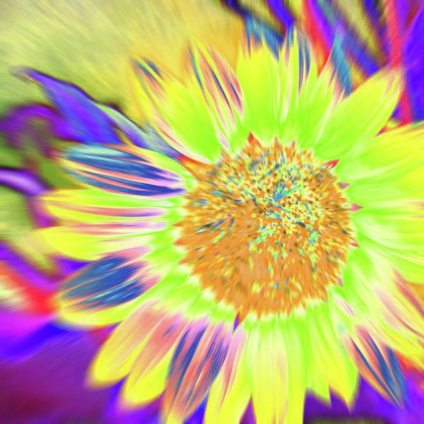 Photograph - Sunburst I by Cris Fulton