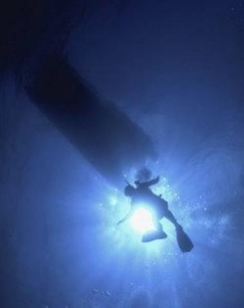 Photograph - Sunburst Diver Descending by Don Kreuter