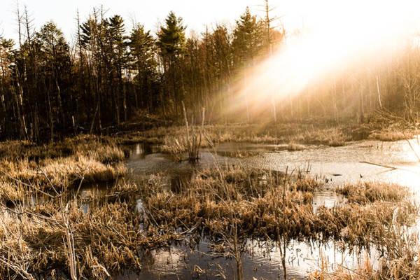 Photograph - Sunburst by Robert McKay Jones