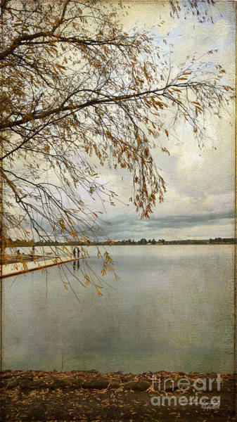 Photograph - Sunday By The Lake II by Chris Armytage