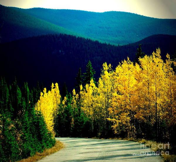Christine Falls Photograph - Sunday Drive by Christine Zipps