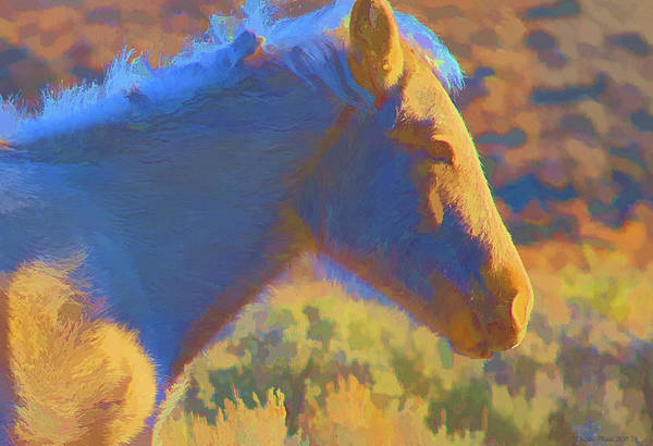 Digital Art - Sunday Morning At The Red Willows by Charles Muhle
