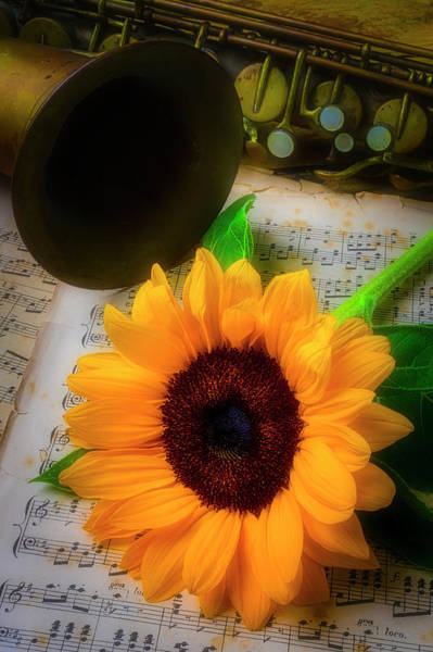 Wall Art - Photograph - Sunflower And Saxophone by Garry Gay
