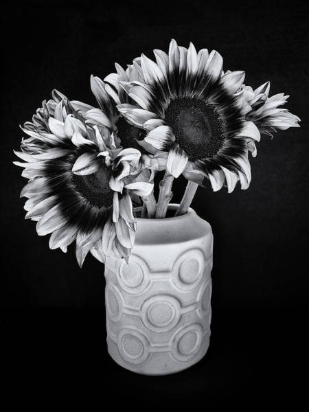 Wall Art - Photograph - Sunflower Circle by William Dey