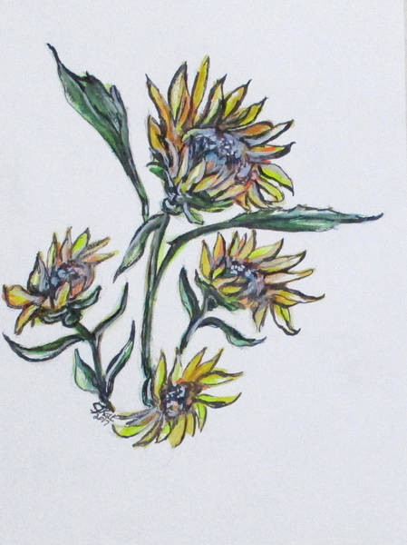 Painting - Sunflower Crazy by Clyde J Kell