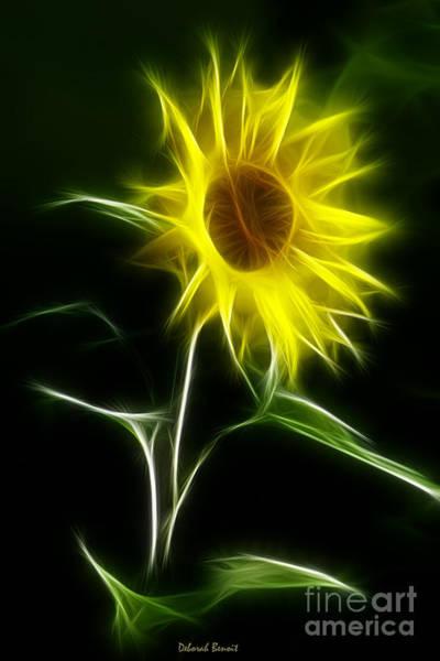 Photograph - Sunflower Display by Deborah Benoit