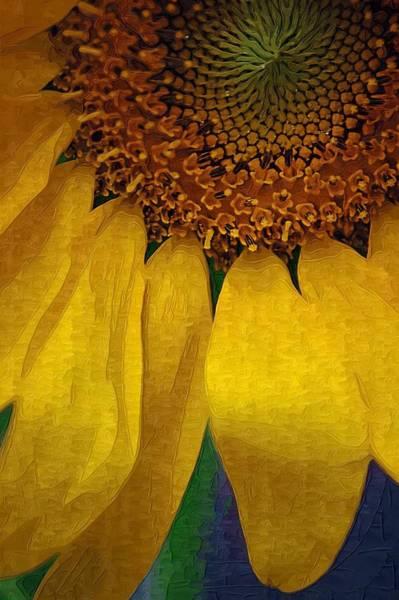 Photograph - Sunflower by Donna Bentley