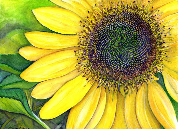 Wall Art - Painting - Sunflower by Elaine Hodges