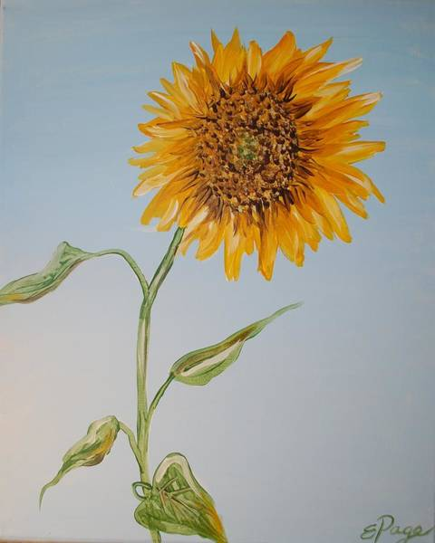 Painting - Sunflower by Emily Page