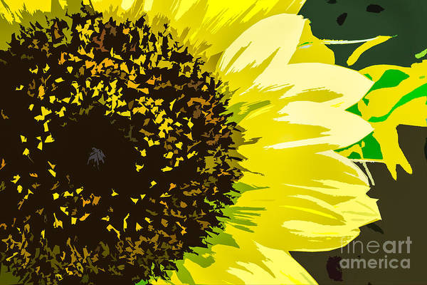 Photograph - Sunflower Essence by Michael Arend