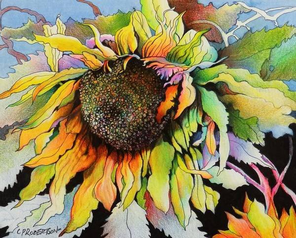 Sunflower Seeds Drawing - Sunflower Finale  by Catherine Robertson