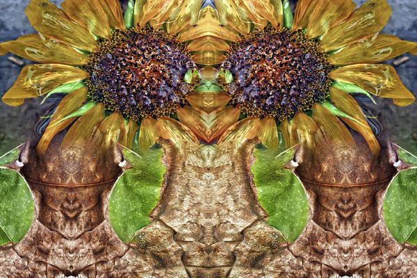 Digital Art - Sunflower Guards by Becky Titus