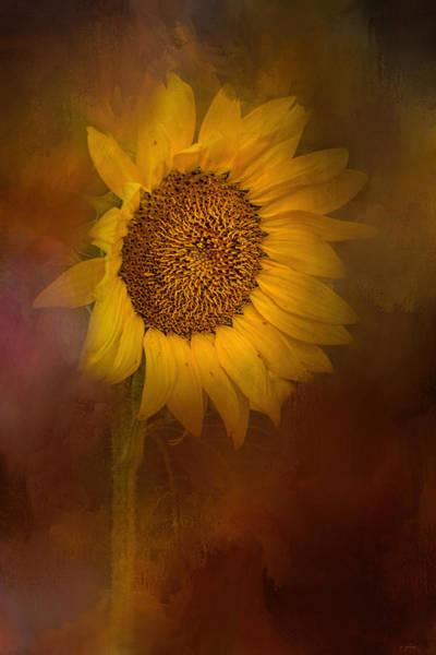 Photograph - Sunflower Hello by Jai Johnson