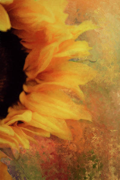Wall Art - Digital Art - Sunflower Impression by Terry Davis