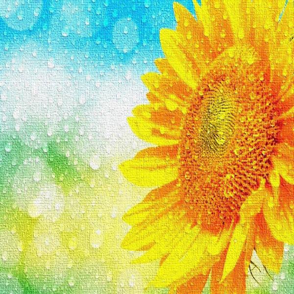 Sunflower In A Sunshower Art Print