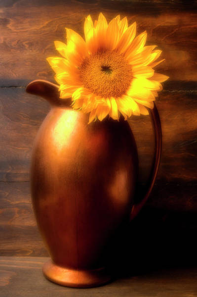 Pitcher Plant Photograph - Sunflower In Copper Vase by Garry Gay