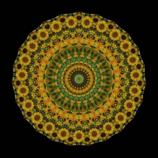 Kaleidoscopes Photograph - Sunflower Mandala by Mark Kiver