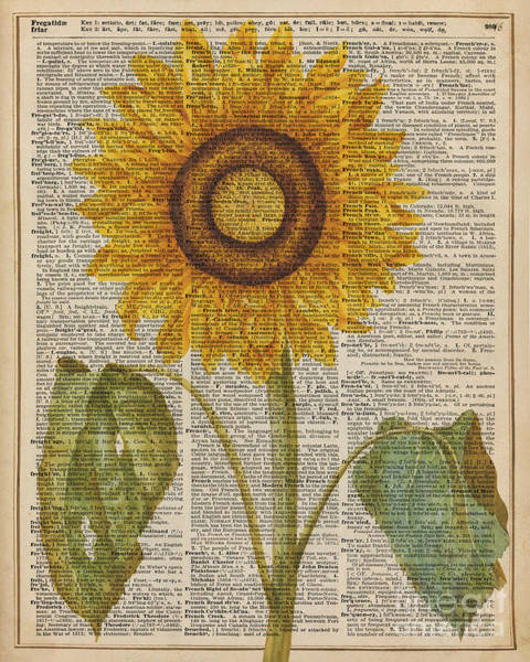 Wall Art - Digital Art - Sunflower Over Dictionary Page by Anna W