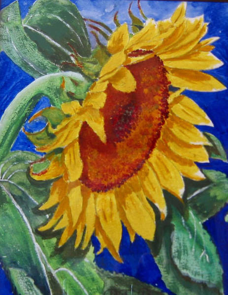 Painting - Sunflower by Richard Le Page