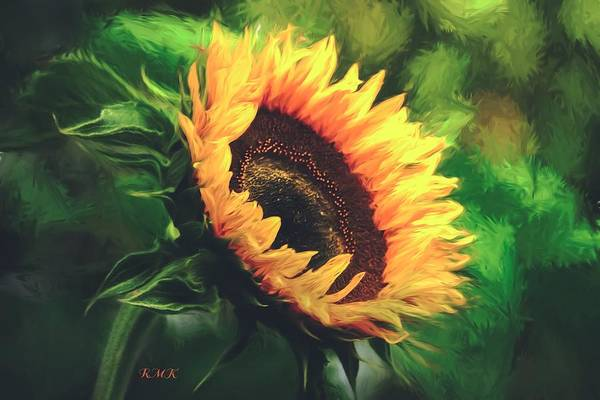 Painting - Sunflower by Rose-Maries Pictures