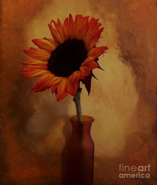 Sunflowers Photograph - Sunflower Seed Maker by Marsha Heiken