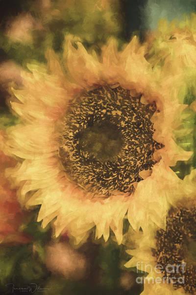 Photograph - Sunflower Splendor by Teresa Wilson