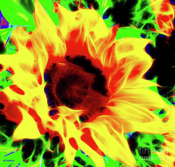 Wall Art - Photograph - Sunflower Sunburst by Jerome Stumphauzer