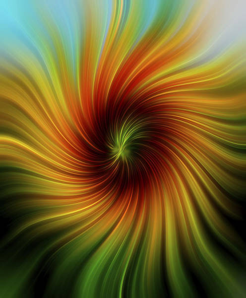 Sunflower Seeds Photograph - Sunflower Swirl by Terry DeLuco