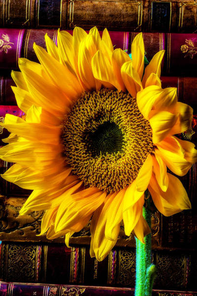 Photograph - Sunflowerand Old Books by Garry Gay