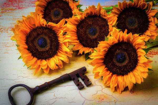 Wall Art - Photograph - Sunflowers And Old Key by Garry Gay