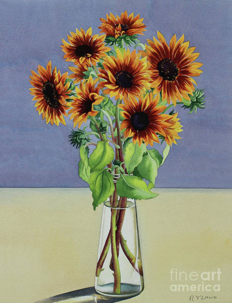 Wall Art - Painting - Sunflowers By  by Christopher Ryland
