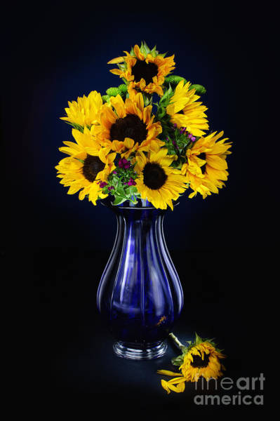 Sunflowers In A Vase Photograph - Sunflowers In A Blue Vase  by Scott Hales