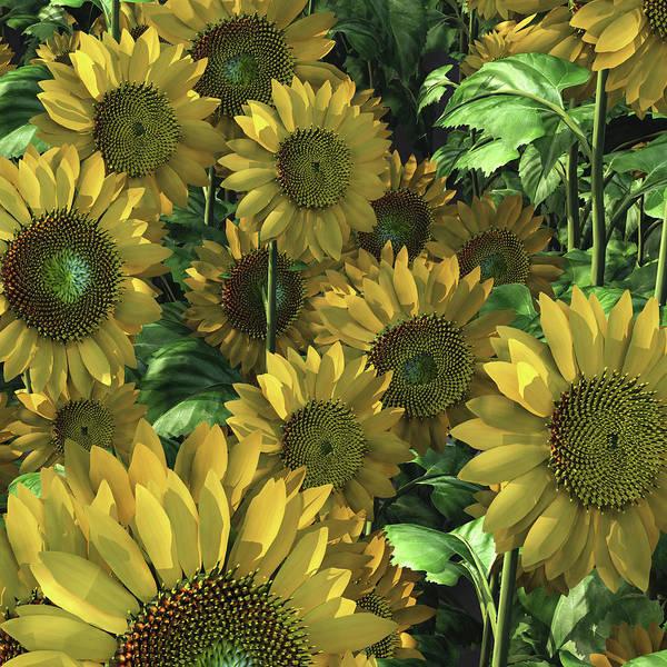 Digital Art - Sunflowers by Jan Keteleer
