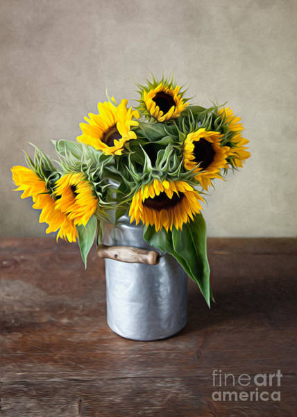 Pretty Wall Art - Photograph - Sunflowers by Nailia Schwarz