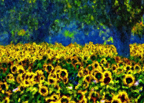 Painting - Sunflowers No2 by Michael Thomas