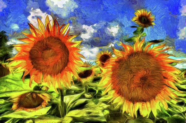 Wall Art - Photograph - Sunflowers Vincent Van Gogh by David Pyatt