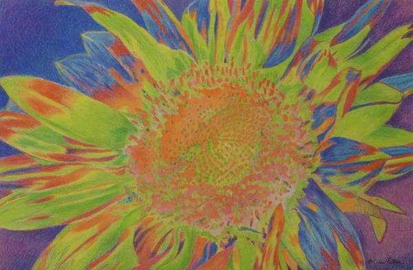 Pastel - Sunjazzed by Cris Fulton