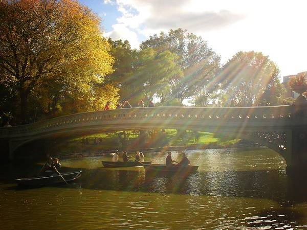 Wall Art - Photograph - Sunlight And Boats - Central Park -  New York City by Vivienne Gucwa