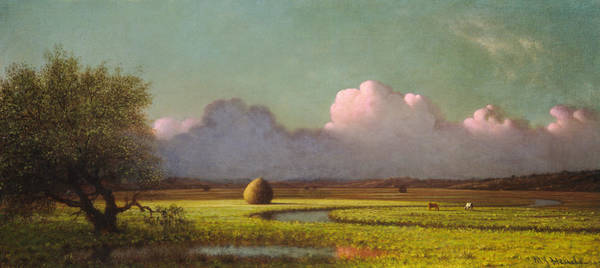 Painting - Sunlight And Shadow by Martin Johnson Heade