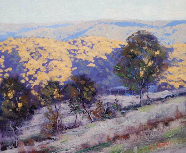 Eucalyptus Wall Art - Painting - Sunlight And Shadows by Graham Gercken
