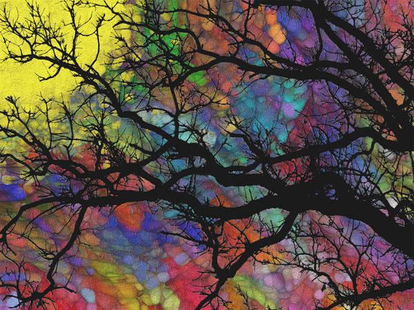 Wall Art - Painting - Sunlight Beyond 2 by Jack Zulli